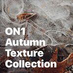 ON1 Autumn Texture Collection