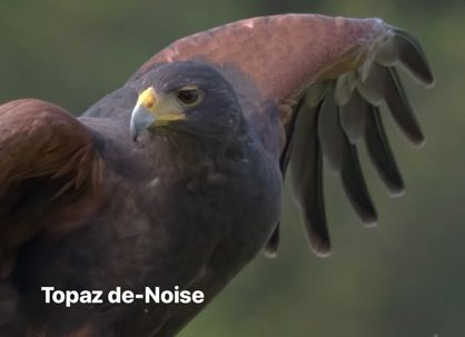 Topaz de-Noise