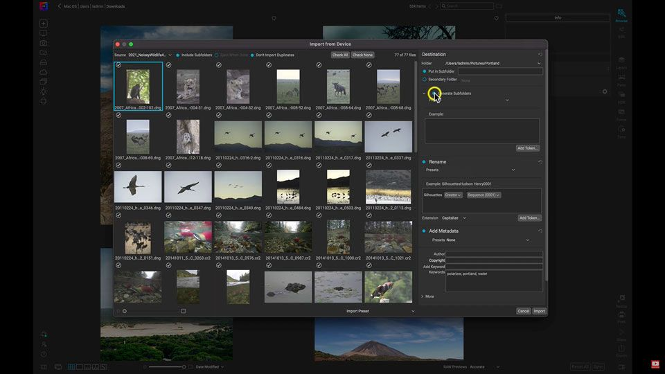 New Enhancements to Make Photo Editing Smoother