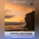 In The Field: Tips of the Week