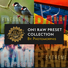 Photomorphis RAW Preset Collection